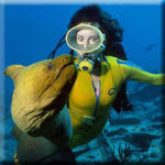 Scuba diving and snorkeling directory.